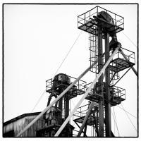 Alaska Mill And Feed by bensonga