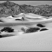 DVNP Mesquite Dunes and Hikers by bensonga in bensonga