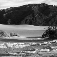 DVNP Mesquite Dunes and Panamint Mountains B&W by bensonga in bensonga