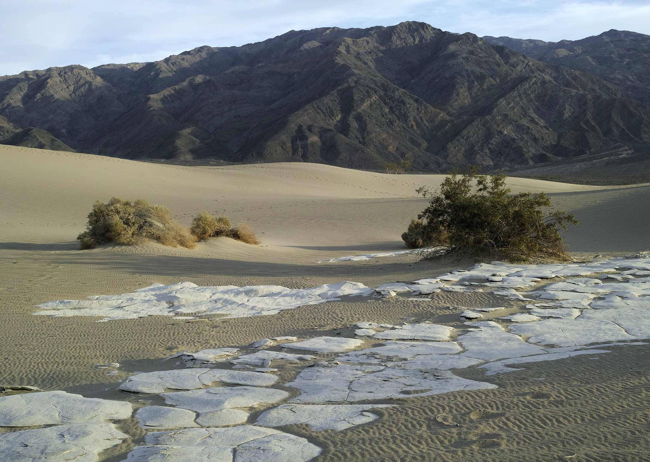 DVNP Mesquite Dunes and Panamint Mountains by bensonga in bensonga