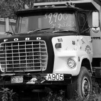 Dsc 0016 Ford Dump Truck Lrg Bw by bensonga in bensonga