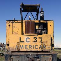 Dsc 0088 Ak Rr American Crane Cropped Xl by bensonga in bensonga