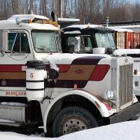 Trucks by bensonga
