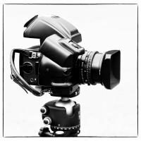 Hasselblad 503cw With Winder & 60mm Cfi