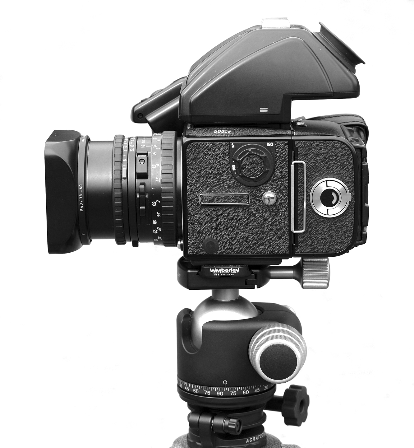 Hasselblad 503cw With Winder & 60mm Cfi - GetDPI Image Gallery