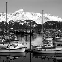 Seward, Alaska Harbor by bensonga