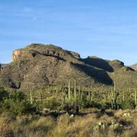 Lower Sabino Canyon Trail by bensonga in bensonga