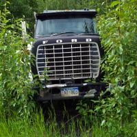 1030886 Ford ENT 803 by bensonga