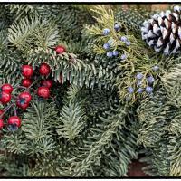 Wreath by bensonga