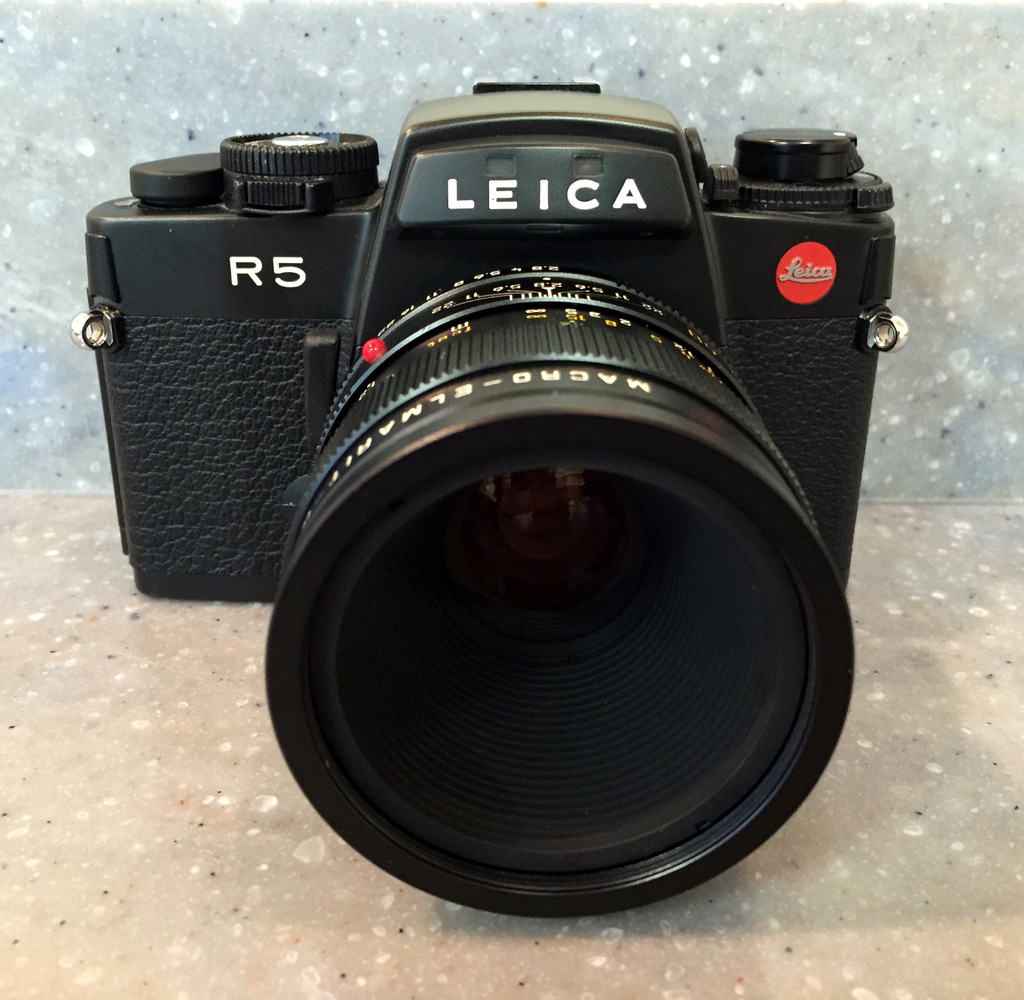 Leica R5 and 60mm Macro-Elmarit-R by bensonga in bensonga