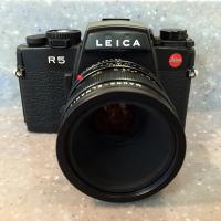 Leica R5 and 60mm Macro-Elmarit-R by bensonga in bensonga