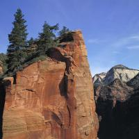 Red Cliff Face, Zion National Park by bensonga in bensonga