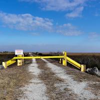 Wilderness, Everglades, Florida by TimothyHyde in Regular Member Gallery