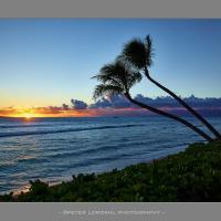 Maui13 Cf001262 900mat by PeterL in Regular Member Gallery